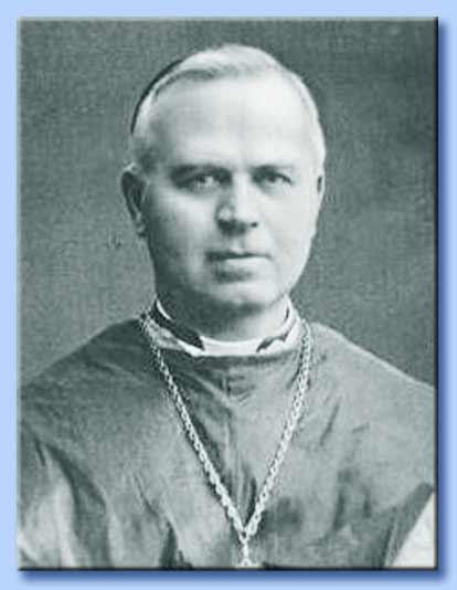 cardinale van roey
