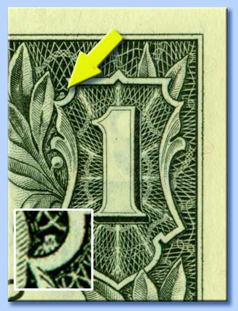 civetta nel dollaro