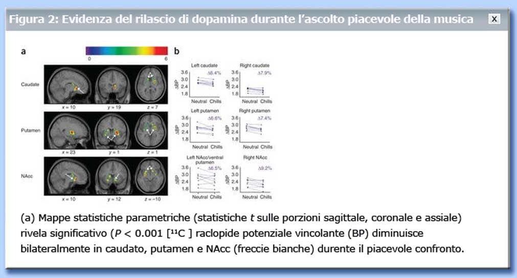tavola rilascio dopamina nº 2